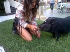 Isabeli Fontana dá comida na boca de porquinho durante sessão de fotos