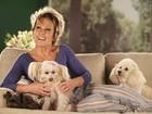 Mimadinhos! Conheça os cachorrinhos de famosos como Xuxa que levam uma vida boa