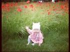 Fofa: Jessica Alba posta foto da filha mais nova brincando em parque