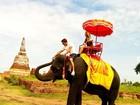 Dani Winits anda de elefante durante férias românticas na Tailândia