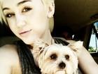 Miley Cyrus teria fumado maconha e ficado bêbada em estúdio, afirma site