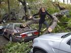Nana Gouvêa registra em fotos danos do furacão Sandy em NY