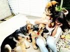 Pérola Faria é 'atacada' por filhotes de cachorros