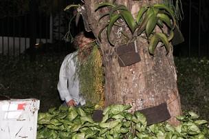 Owen Wilson se esconde atrás de árvore para se esconder dos paparazzi em São Paulo (Foto: Manuela Scarpa/Photo Rio News)