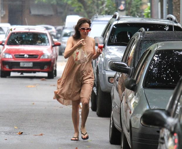 Carolina Ferraz (Foto: Rodrigo dos Anjos/AgNews)