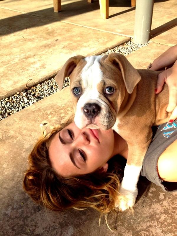 Miley Cyrus e seu cãozinho de estimação, Ziggy (Foto: Reprodução / Twitter)