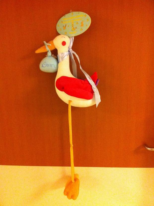 Pedro Scooby posta foto de enfeite da porta do quarto da maternidade (Foto: Twitter / Reprodução)