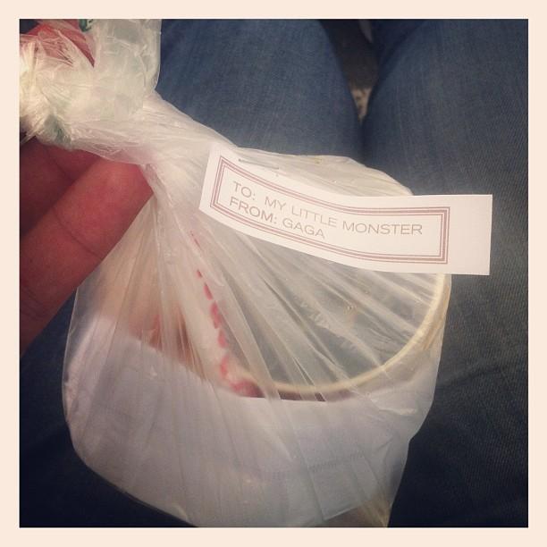 Lanche distribuído por lady gaga (Foto: Reprodução/Instagram)