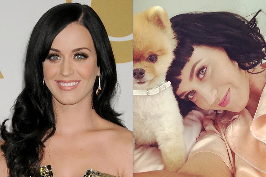 Katy Perry é a famosa mais recente a entrar para a turma dos cabelos acima dos ombros: a cantora postou em seu Instagram uma foto do novo visual