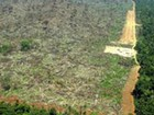 Após avanços, governo 'mudou de atitude' sobre Amazônia, diz 'NYT'