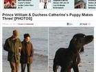 Príncipe William e Kate Middleton adotam filhote de cocker spaniel