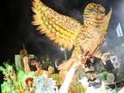 Jucutuquara leva Amazônas ao Sambão (Weliton Aiolfi/ G1ES)