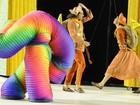 'Foi um campeonato regado a muita diversão', diz coreógrafa da Tijuca