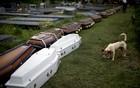 Passa de 900 o número de mortos na serra (Felipe Dana/ AP)