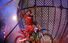 'Le cirque' apresenta espetáculo em Olinda (Divulgação)