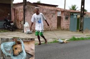 Cachorro é arrastado por vários quarteirões em João Pessoa (Foto: Divulgação/Arquivo Pessoal)