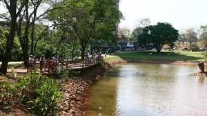Parque Flamboyant é o mais novo cartão-postal da cidade.  (Foto: Sebastião Nogueira/O Popular)