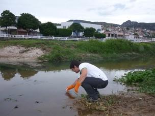 Coleta da água no município de Jacobina, na Bahia (Foto: ONG SOS Mata Atlântica)