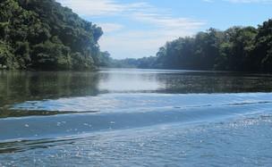 RIo Xingu tem 1,8 mil quilômetros de extensão (Foto: Mariana Oliveira / G1)