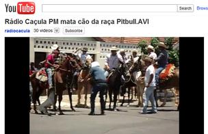 Pit bull foi atingido por tiro de policial quando atacava cavaleiros (Foto: Reprodução/Youtube)