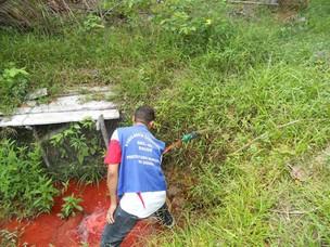 Técnicos foram ao local colher amostras para desvendar 'mistério' (Foto: Divulgação/ Aqui Goiana)