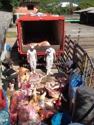 Um abatedouro de gado foi fechado na manhã desta quinta-feira (8) em Imigrante, região do Vale do Taquari (Foto: Thiago Mombach Pinheiro Machado)