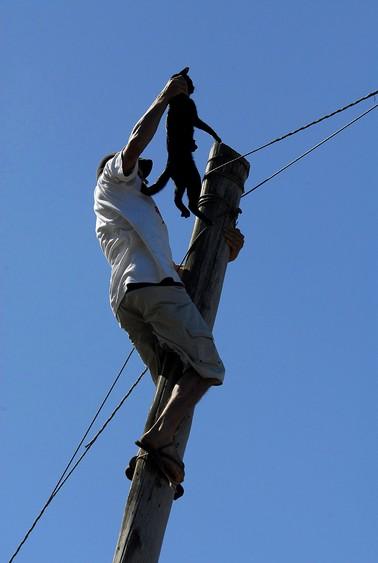 Cléber Alves salvou um gato que estava em cima de um poste (Foto: Rodrigo Assmann/Gazeta do Sul)