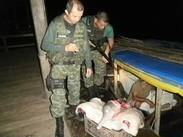 Environmental police in the Amazon seize the meat of two dolphin and an alligator during the apprehension of two men during special operation.