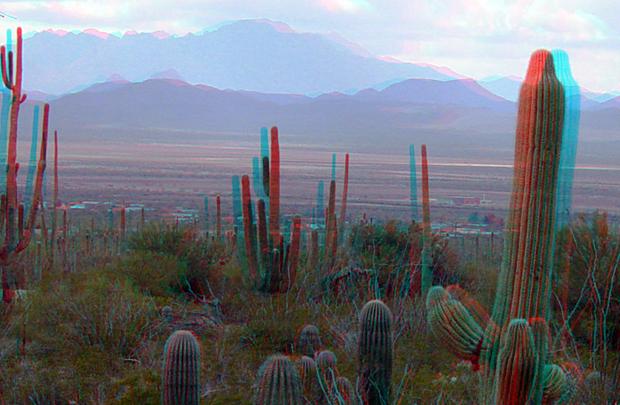 Saguaro National Park em fotografia 3D