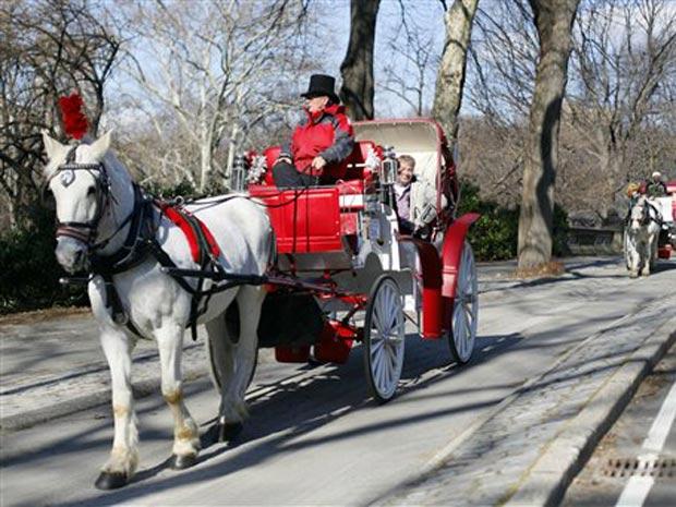 Cavalos das carroças do Central Park terão direito a férias.