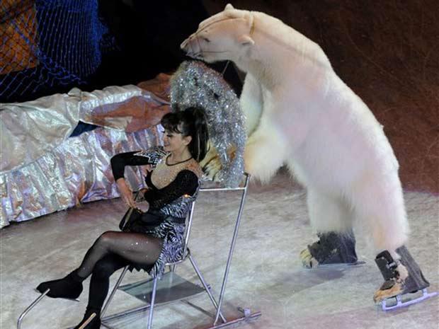 Um urso polar é uma das atrações de um circo de Moscou. O animal levanta o público quando mostra seu talento na patinação no gelo, um esporte muito popular na Rússia. Na foto, o urso aparece empurrando um trenó durante apresentação nesta segunda-feira em