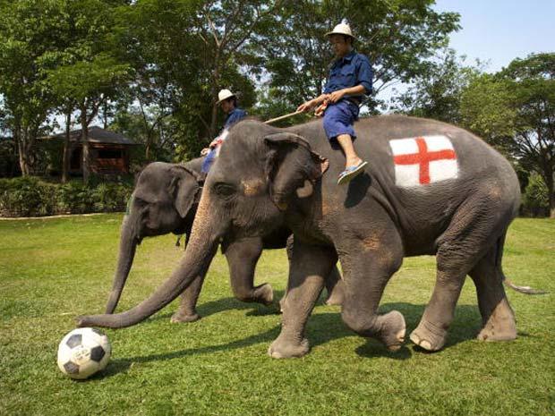 A partida, segundo a agência 'Barcroft Media', terminou com vitória da Inglaterra por 3 a 2.
