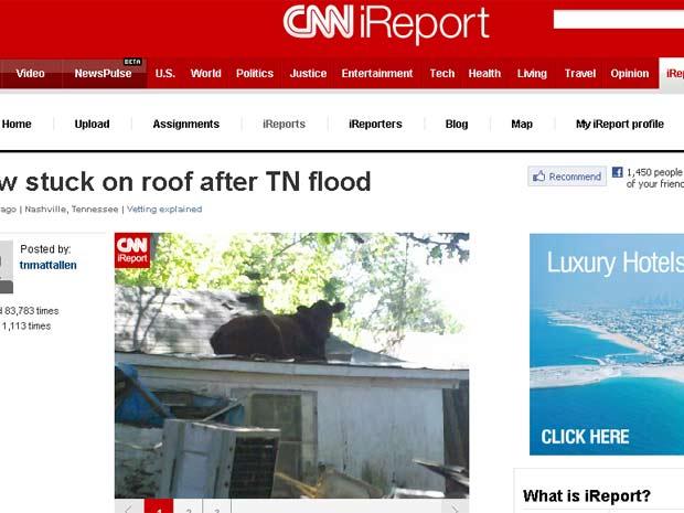 Vaca foi parar no telhado de casa após enchente.