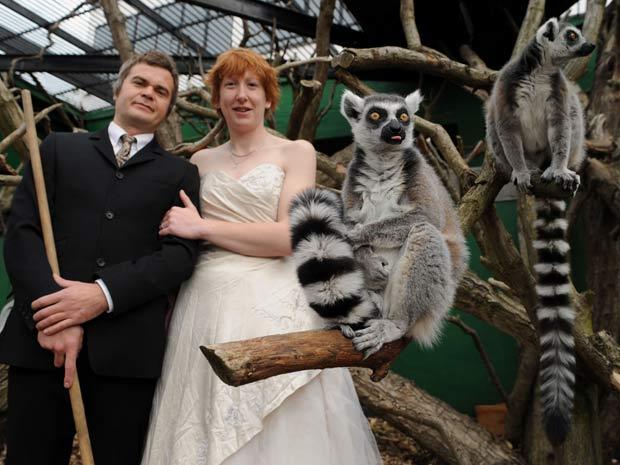 Zoo de Londres pretende alugar seu espaço para noivos.