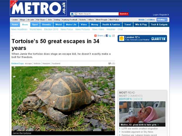 Jamie, a tartaruga,  gosta de uma boa aventura pela vizinhança