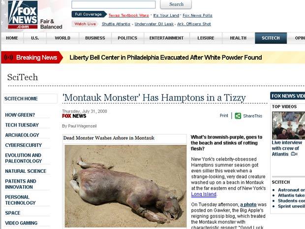 Animal estranho que foi encontrado em Montauk Beach, no estado de Nova York, em 2008.