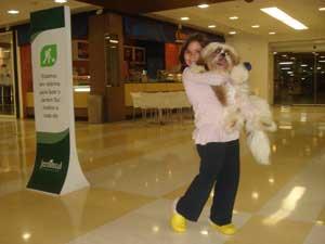 Cachorro em shopping 1