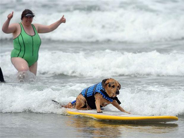Americana incentiva cachorro a surfar na Praia Imperial