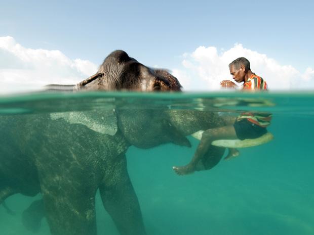 A façanha, realizada em 10 de dezembro de 2008, foi documentada pelo fotógrafo Cesare Naldi, que levou o primeiro prêmio de um concurso internacional de fotografia da National Geographic.