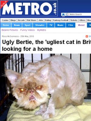 Bertie tem oito anos de idade