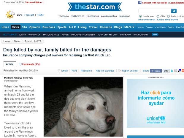 Labrador chamado 'Jake' morreu após ser atropelado em Toronto.