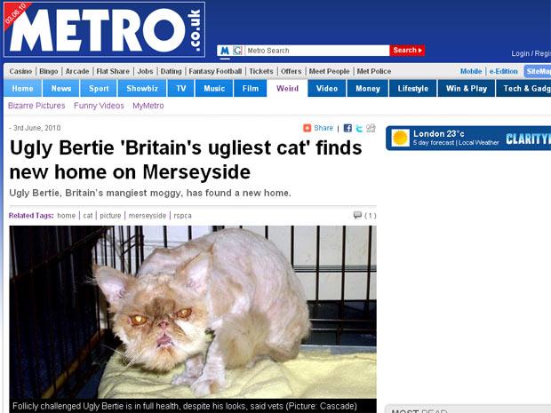 Bertie, de 8 anos, foi adotado por casal de Mereyside