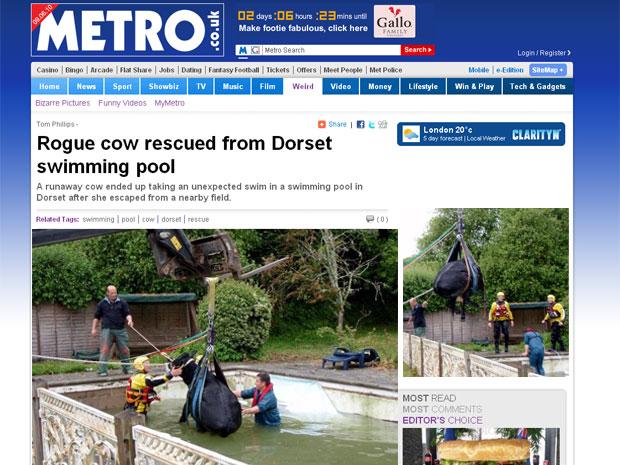 Daisy foi resgatada por quatro homens