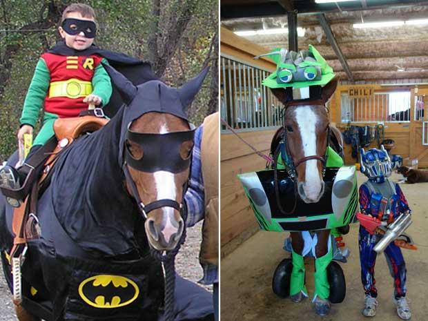 Cavalos ganham fantasias de Batman e Transformers