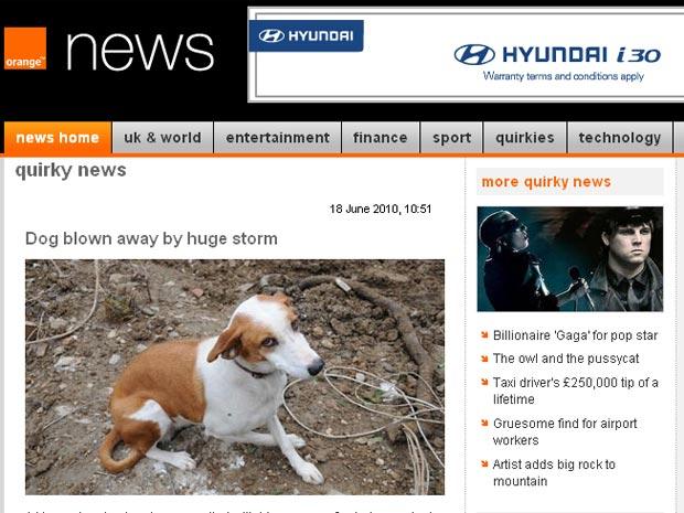 Lucky foi encontrado pelo resgate a 32 quilômetros de casa