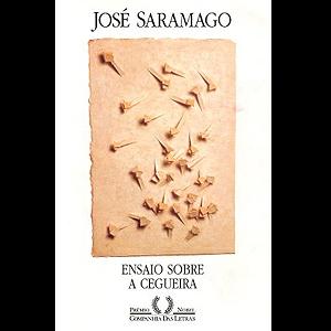 'Ensaio sobre a cegueira', de José Saramago.