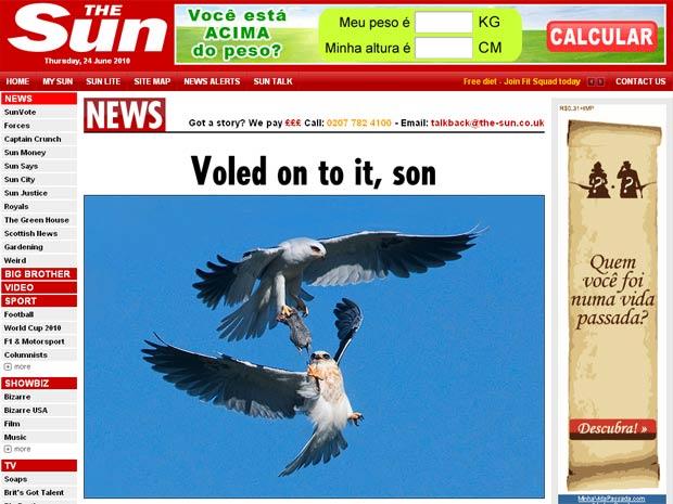 Pai e filho gavião protagonizam cena inusitada no céu de São Francisco