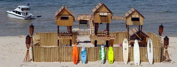 Camundongos ganharam casa de praia