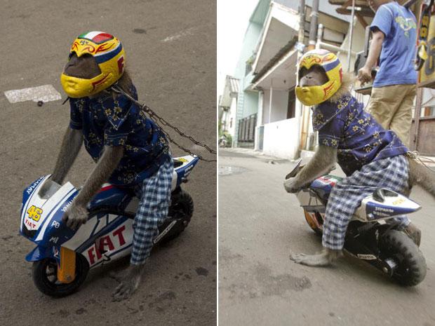 Ucil demonstra sua habilidade na moto inspirada em modelo italilano