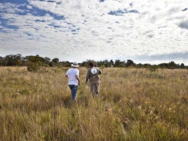 Estação Ecológica Santa Bárbara, região de Bauru, tem 2.712 hectares